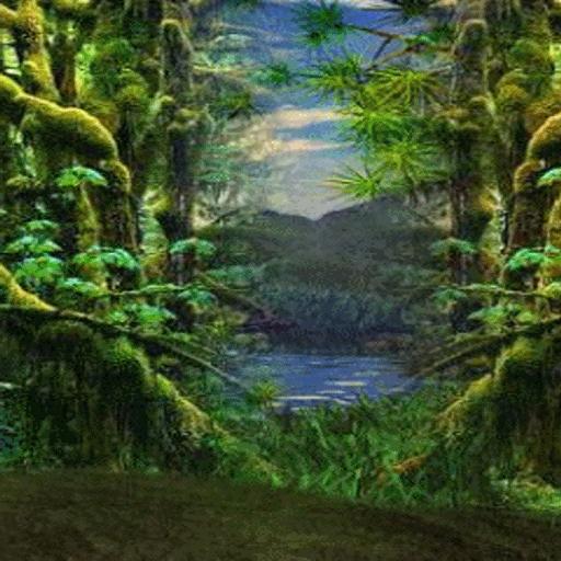 анимация природа на телефон 240х320 № 2088 без смс