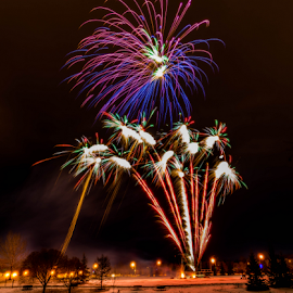 Fire Work Competition  by Joseph Law - News & Events World Events ( lamps, alberta, bushes, colorful, firework, beautiful, trees, sherwood park, lamp post, competition )
