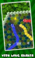 Screenshot of Crazy Snake