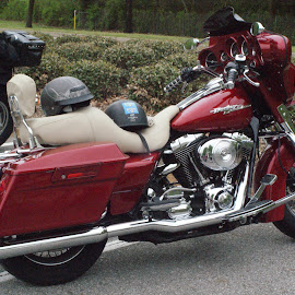 by Janet Blackwell Wilson - Transportation Motorcycles