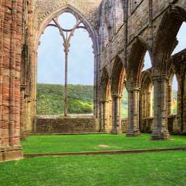 Tintern's Great Window by Skye Ryan-Evans - Buildings & Architecture Public & Historical ( religion, cistercian monastery, tintern abbey, benedictine monastery, historic site, welsh abbey, famous sites, places of worship, ancient ruins )