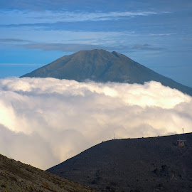 Merbabu MT  by Tino Santoso - Landscapes Travel