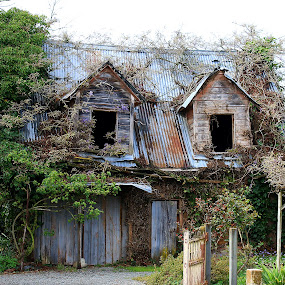 Old Abandoned Cottage by Phil Le Cren - Buildings & Architecture Decaying & Abandoned ( building, old, cottage, decaying, abandoned )
