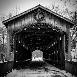 Ada Covered bridge by Dale Pausinga - City,  Street & Park  City Parks ( winter, park, black and white, covered bridge, bridge, city park, cristmas, historic )