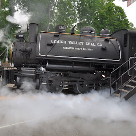 Steaming Engine by Janice Burnett - Transportation Trains ( steam locomotive, steam engine, railroad, steam train, steam )