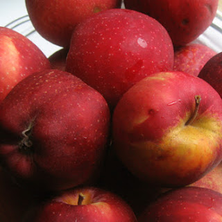 Apple Relish For Canning Recipes