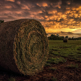 After the Storms by John Bowers - Landscapes Prairies, Meadows & Fields ( farm, field, showers, sky, thunderstorm, sunset, hay, hay bale, storm, kansas, rain,  )