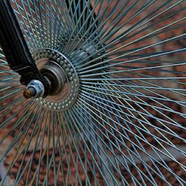 Bike wheel by Dominic Jacob - Transportation Bicycles ( bike, wheel, bikes, velo, roue,  )