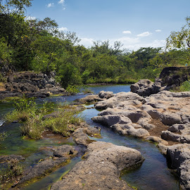 Blue lagoon by Alejo Cedeno - Nature Up Close Rock & Stone ( panama, nature, bluelagoon, sanfrancisco, trees, gorgeouspanama, rockformation, lake, waterweeds, landscape, woods, rocks )