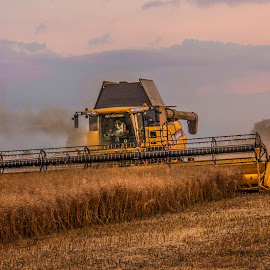 Harvest time by Ian Flear - Transportation Other