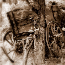 Lincoln Wagon by Steve Parsons - Artistic Objects Still Life ( sepia, wood, tongue, wheel, wagon, old west, covered wagon, buckboard, spokes )