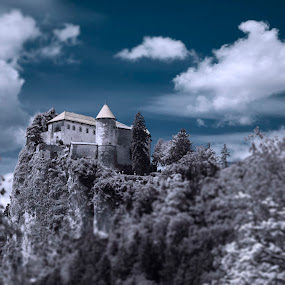Bled cstle - Slovenia by Dominik Konjedic - Buildings & Architecture Public & Historical ( infrared, slovenia, bled, castle )
