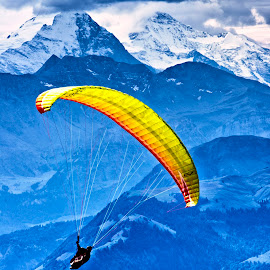 Hang Gliding from Mount Pilatus by Fred Walker - Sports & Fitness Other Sports ( mount pilatus, sport, hang gliding, switzerland, eiger, gliding, alps )