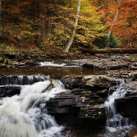 Fall is here and it sounds wonderful by Steven Maerz - Landscapes Forests ( #fall#autumn#waterfall#stream#rushing#water )