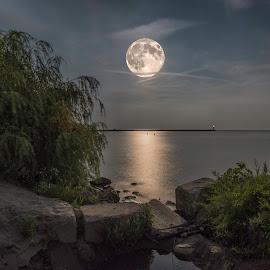 Super Moon by Michael Rea - Landscapes Waterscapes ( moon, reflection, waterscape, landscape, landscapes )
