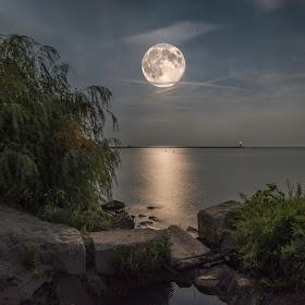 Super Moon.jpg
