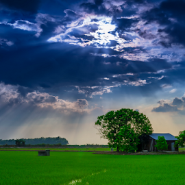 The Light of God by KIN WAH WONG - Landscapes Cloud Formations ( god, hut, paddy, cloud, scenery, landscapes, light, fields )