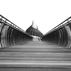 Eagle's Pod (Lookout) by Alan Chew - Buildings & Architecture Bridges & Suspended Structures