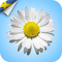 MindfulnessCJ SWE icon