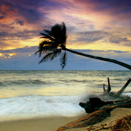 Sumingi Beach by Kurniadi Abdul Rachman - Landscapes Beaches ( indonesia tourism, sumingi, beach, landscape, selayar )
