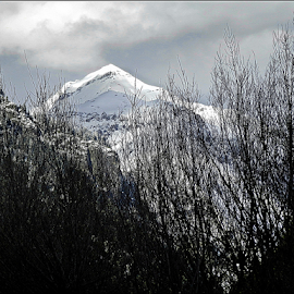 A Snow  Peak by Sutanu Mukherjee - Landscapes Mountains & Hills ( himalaya, peak, snow, cloudy, kashmir,  )