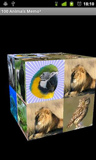 100 Animals Memo³ Free