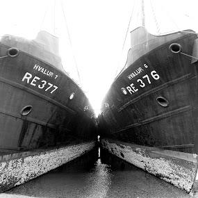 B&W by Ólafur Ingi Ólafsson - Black & White Objects & Still Life ( hvalfjörður, iceland, ship, sea, ships )
