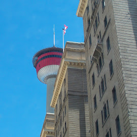 The Calgary Tower versus the Palliser Hotel by Lena Arkell - Buildings & Architecture Office Buildings & Hotels ( tower, canada, alberta, calgary, hotel )