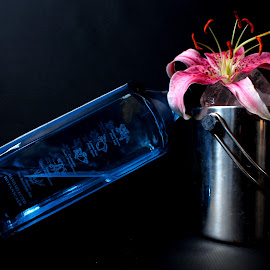 by Lilia Martin-richards - Food & Drink Alcohol & Drinks ( lily, gin, bombay sapphire )