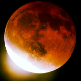 Blood Moon Lunar Eclipse by William Johnson - News & Events Science