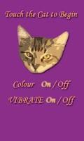 Screenshot of Cat Toy