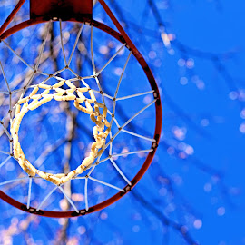 Aim High For Your Goals by Ronda Langley - Sports & Fitness Basketball ( basketball, basketball goal, blue sky, fitness, sports, net, goal, athletic )