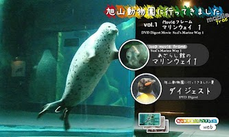 Screenshot of Animal video [Seal]  tusk.jp