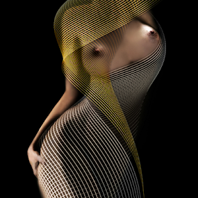 Lady by Carmen Velcic - Digital Art People ( abstract, body, nude, woman, she, lady, digital, curves )