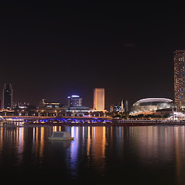 Beautiful Esplanade by Michael Loi - Novices Only Landscapes ( beautiful, night, sg, esplanade, singapore )
