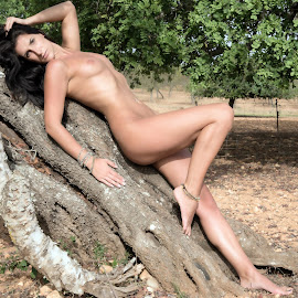 On the tree by Tomas Fensterseifer - Nudes & Boudoir Artistic Nude ( nude, tree, outdoor, sunshine )