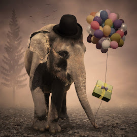 Go To A Birthday Party by Alfa Oldicius - Digital Art Things