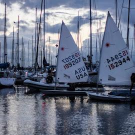 End of Race by Matt Goodwin - Transportation Boats ( golden gardens, seattle, sailing, sunset, shilshole, boats, sailboat,  )