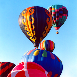 Taos Balloon Festival by Jane Spencer - News & Events US Events ( air balloons, taos, festival, take-off, balloons, new mexico,  )
