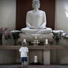 When Buddha met Lincoln by Mark Cullen - Babies & Children Toddlers