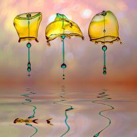 Brotherhood of the Umbrella by Ganjar Rahayu - Abstract Water Drops & Splashes ( highspeed, macro, reflection, waterdrop )