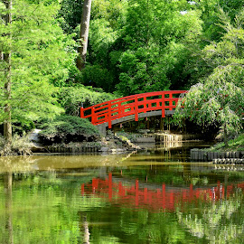 Red Bridge by Roy Walter - City,  Street & Park  City Parks ( nature, waterscape, bridge, landscape, garden )