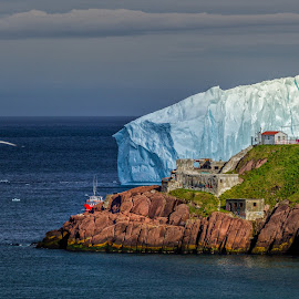 The Guardian by Shawn Hudson - Landscapes Travel ( clouds, iceberg, cliffs, canada, newfoundland, lighthouse, ocean, coastline, boat, birds, shawn hudson, east coast, srhpimaging, shawnhud@gmail.com, blue, ice, st.john's, rocks )