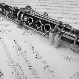 Clarinet by Lauryn Cook - Artistic Objects Musical Instruments