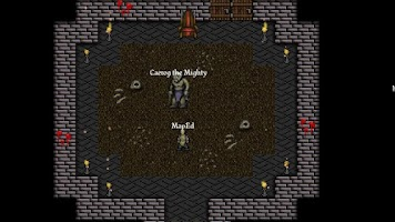 Screenshot of 9th Dawn RPG +
