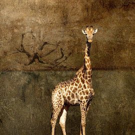The Waterhole by Bjørn Borge-Lunde - Digital Art Animals ( wild animal, animals, wilderness, nature, giraffe, wildlife, africa )