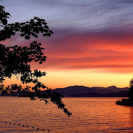 Seawall at dawn by Stephanie  Karamanian - Landscapes Sunsets & Sunrises ( orange, dawn, stanley park, seawall, sunset )