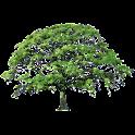 Oak Tree Summer Sticker icon