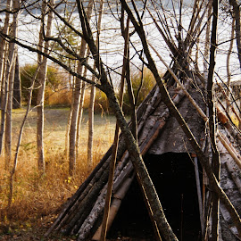Wigwam in Grand Portage by Tammy Drombolis - Buildings & Architecture Other Exteriors (  )