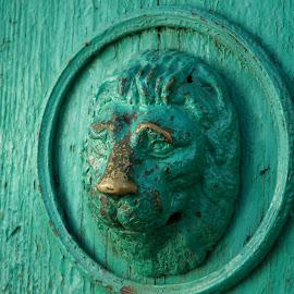 Lion's head by Sámuel Zalányi - Artistic Objects Antiques ( lion's, copper, temesvar, door, banat, head,  )